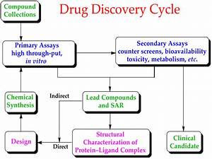 File Drug Discovery Cycle Svg