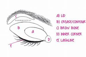 How To Apply Eye Shadow For Eye Shape