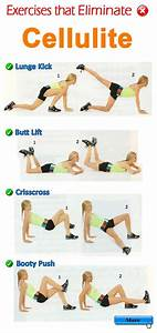 Workout Diagrams  28 Pics