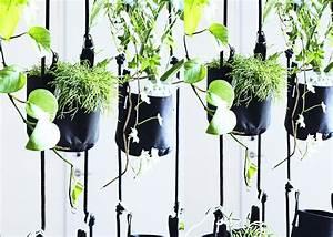 Cache Pot Suspendu : jardini re suspendue design sign e trimm copenhagen ~ Premium-room.com Idées de Décoration
