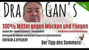 Mittel Gegen Mücken : 100 mittel gegen m cken m ckenfalle genialer tipp von dragan youtube ~ Frokenaadalensverden.com Haus und Dekorationen