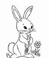 Coloring Pages Rabbits Rabbit Popular sketch template