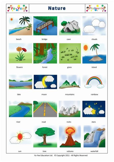 nature flashcards  children nature teaching nature