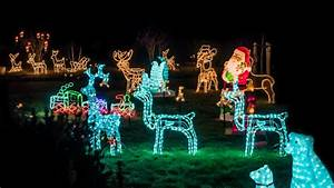DALANI Luci natalizie per esterno: eleganza in giardino