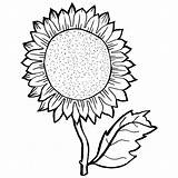 Sunflower Coloring Pages Drawing Adults Sunflowers Getdrawings Sheets Seeds Sheet Ve Young Seed Template Personal Clipartmag Colored Alluring Printable Survival sketch template