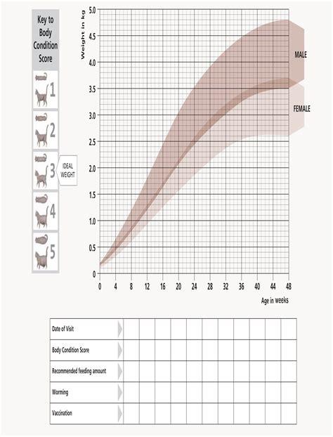 Kitten Growth Chart From Hills Card Prints Pinterest
