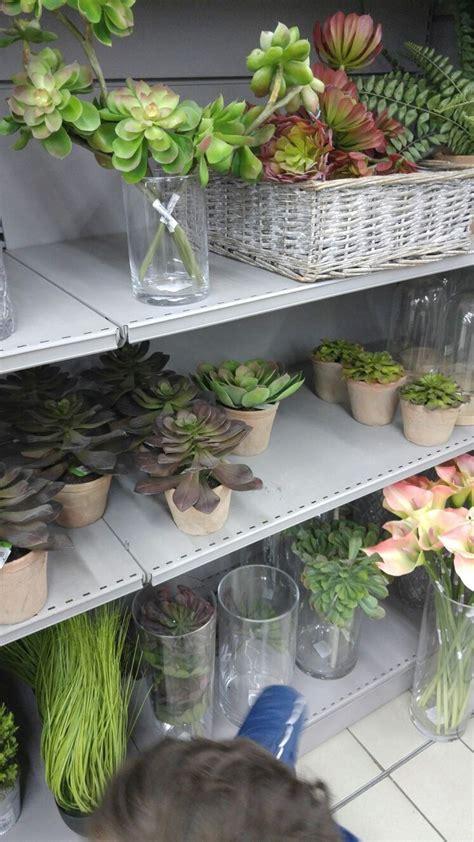 plantes cuisine 17 meilleures idées à propos de fausses plantes sur
