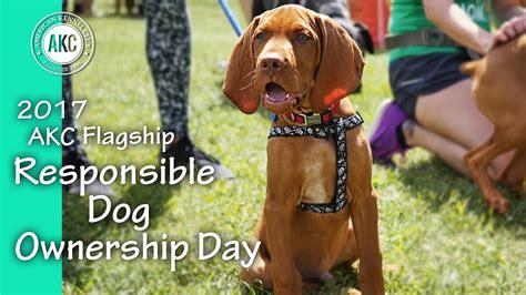 2017 Akc Flagship Responsible Dog Ownership Day