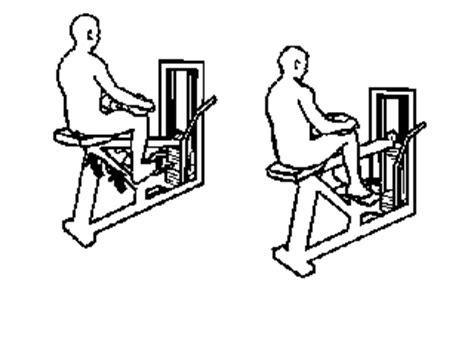 Calf Seduto Pippo77 Esercizi Per Gambe E Glutei