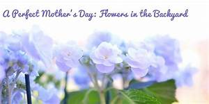 Perfect Mother's Day Flowers in the Backyard - Fresh by FTD