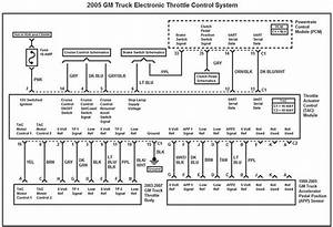Ls3 Throttle Body Wiring Diagram