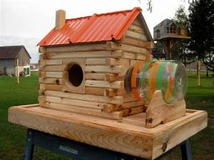 Extreme squirrel feeders and dog houses contractortalk for Extreme dog houses