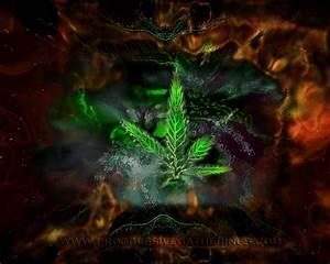 Marijuana Wallpapers - Wallpaper Cave