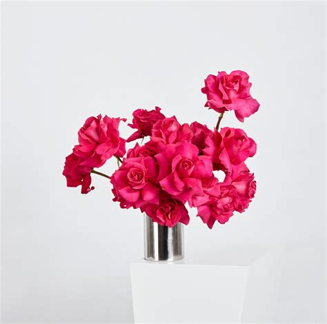 Discover (and save!) your own pins on pinterest. Pink Floyd | Floral Arrangement | Hermetica Flowers