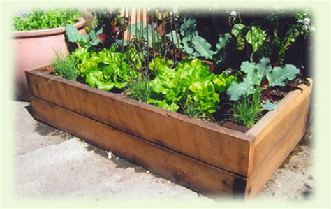 above ground garden box 17 best 1000 ideas about cheap