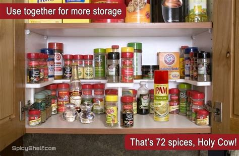 how to organize kitchen cabinets 19 best spicy shelf in images on spice 8768