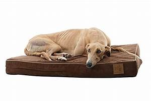 laifug 45dhi premium memory foam orthopedic extra large With dog beds for large dogs with hip problems