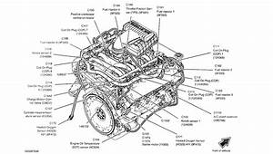 F 150 Engine Diagram For 2000 V 6