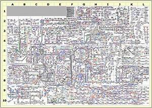 Biochemistry Of The Human Cell  Schematic Diagram Shows