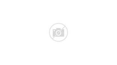 Truck Fold Transported Unit Standard Engineering Ten