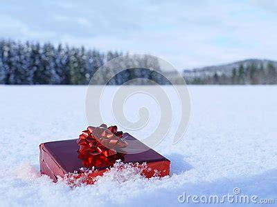 wrapped christmas package stock  image
