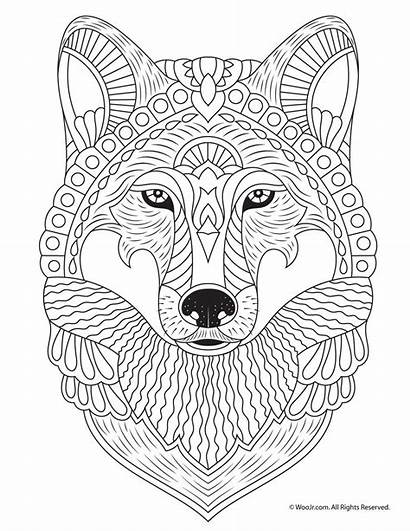 Coloring Adult Pages Animal Fall Wolf Printables