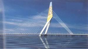Delhi's Signature Bridge needs environmental clearance