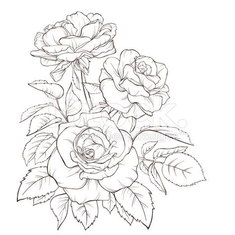 rose bouquet vintage card kytky flower  drawings