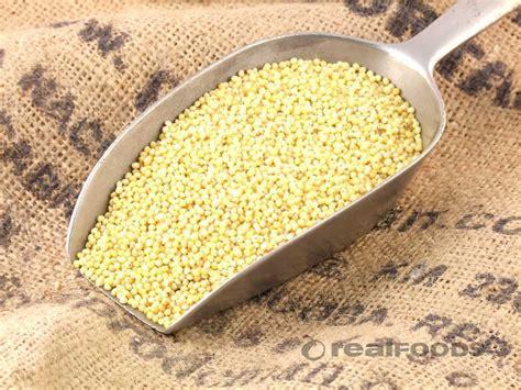 millet cuisine millet protein rich versatile and gluten free croptech