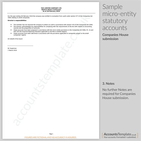 guide  micro entity statutory accounts format