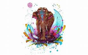 Colorful Tribal Elephant Wallpaper | www.pixshark.com ...