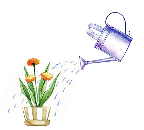 watering can with water coming out marriage work huffpost