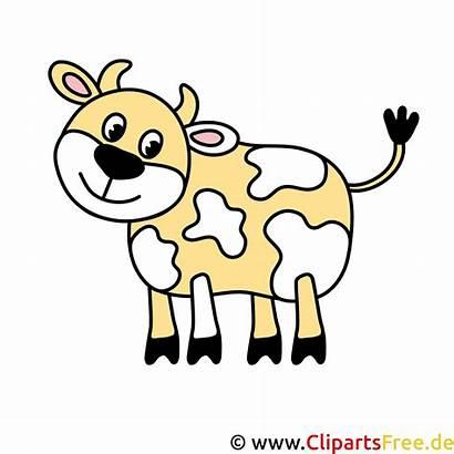 Bild Kuh Cartoon Kostenlos Clipart Animados Ko