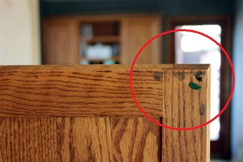 options  fix noisy kitchen cabinets