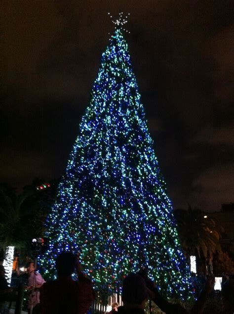 orlando mayor buddy dyer and city commissioners welcome with 72 foot tree lighting at