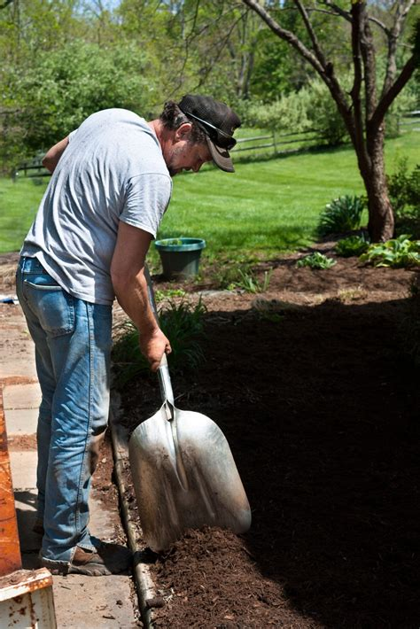 mulch application  gardens   spread garden mulch