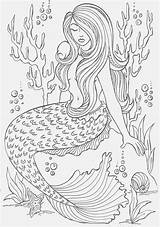 Mermaid Coloring Pages Adults Adult Mermaids Colouring Sheets Fairy Realistic Above Credit Books Easy Coloringpagesfortoddlers sketch template