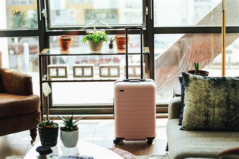 picture suitcase flowerpot plant table travel