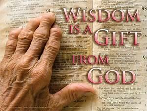 Wisdom From Heaven | Author Jodi Woody