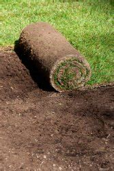 lawn laying cost how much does sod cost sod prices