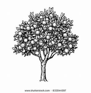 Vintage Tree Stock Images, Royalty-Free Images & Vectors ...
