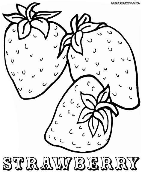 Coloring Strawberry by Strawberry Coloring Pages Coloring Pages To And