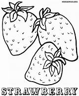 Strawberry Coloring Pages Strawberries Colorings sketch template