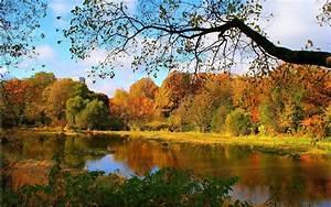 ダウンロード壁紙 1920x1200 美しい秋の森の川の風景 HDのデスクトップの背景