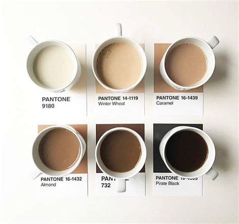 color and coffee best 25 pantone ideas on