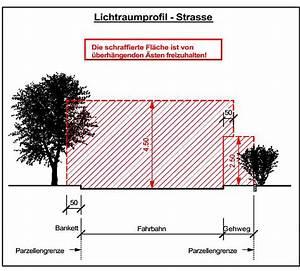 Gartenhaus Abstand Zum Nachbarn : b ume und str ucher ~ Lizthompson.info Haus und Dekorationen