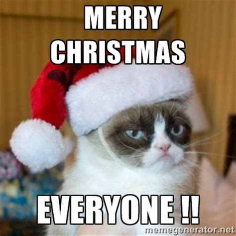 Merry Christmas Cat Meme - grumpy cat christmas pics merry christmas everyone grumpy cat santa hat meme generator