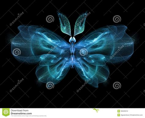 Butterfly Elegance Stock Photography