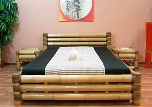 Was Passt Zu Bambus : design bambusbett 200x220 wasserbett bettrahmen ~ Watch28wear.com Haus und Dekorationen