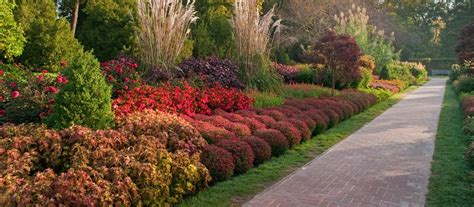 autumn s colors longwood gardens